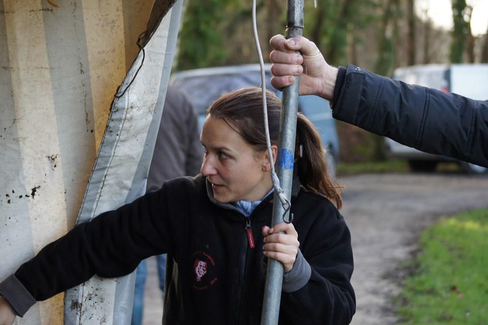 Amélie aidant à la monte du barnum