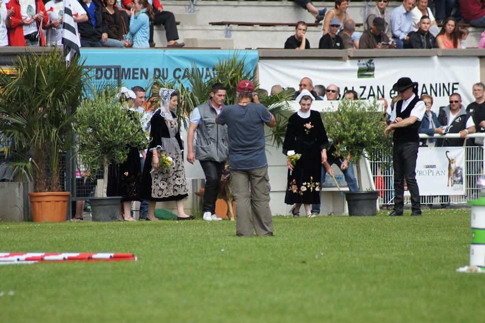 Championnat de France RING 29 ET 30 JUIN 2013 A QUIMPERLE