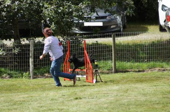 CONCOURS AGILITY AOUT 2016